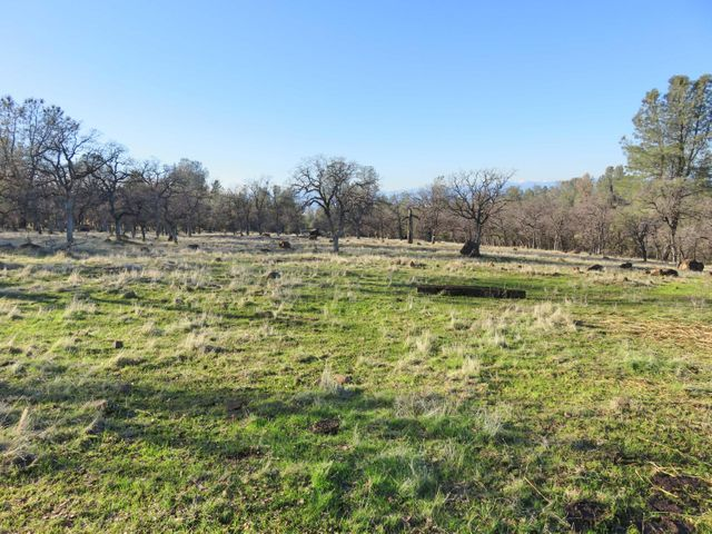 97+ acres Wildcat Road, Shingletown, CA 96088