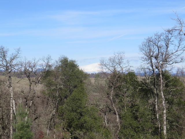 Whitmore Rd, Millville, CA 96062