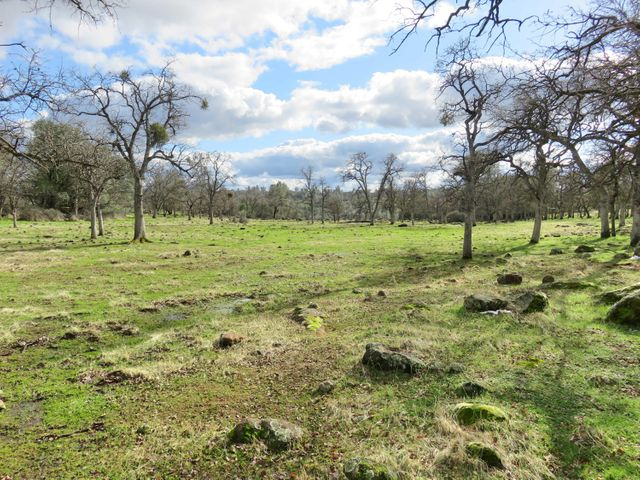 46 acres Wildcat Road, Shingletown, CA 96088