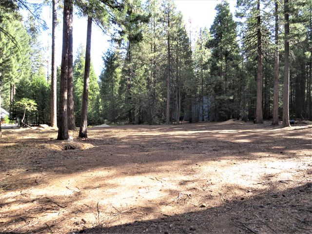 9283 Mountain Meadow Rd, Shingletown, CA 96088