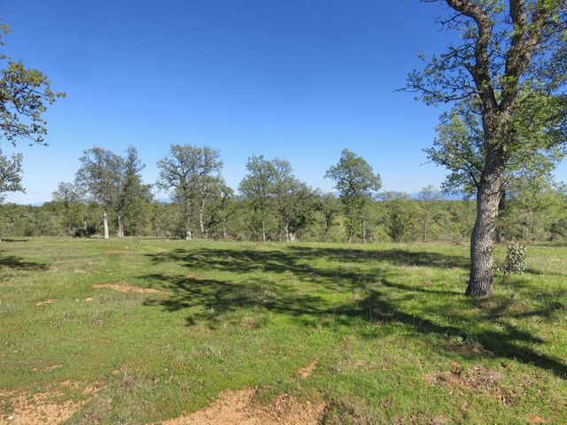 40 acres off Oak Lane, Cottonwood, CA 96022