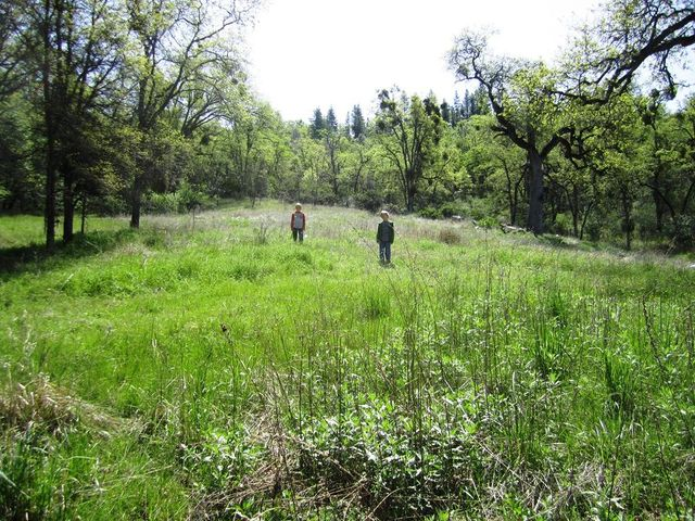 173 acres Shingletown Ridge Road, Shingletown, CA 96088