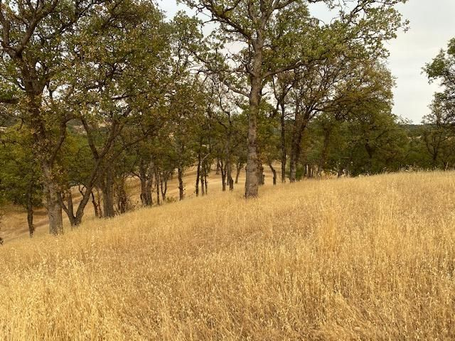 0000 Happy Valley Trails Drive, Cottonwood, CA 96022