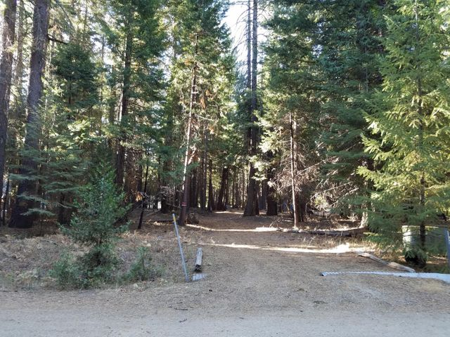Lot # 9 Redwood Drive, Shingletown, CA 96088