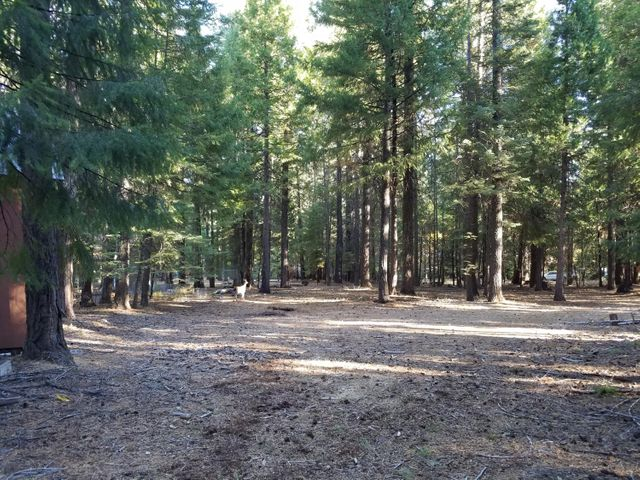 Lot # 8 Redwood Drive, Shingletown, CA 96088