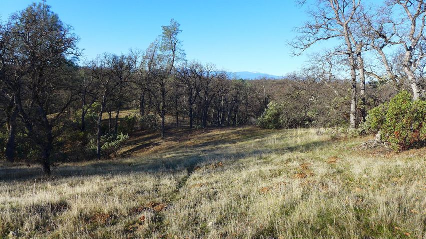 Lot 12 Oak Valley Dr., Cottonwood, CA 96022