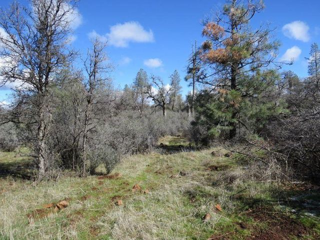 Lack Creek Rd, Shingletown, CA 96088