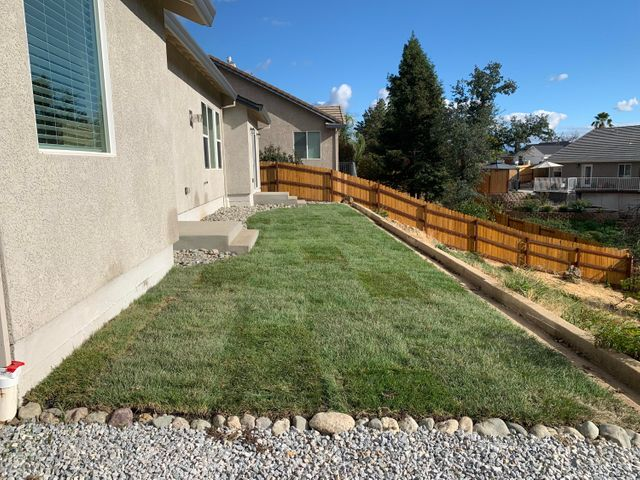 Fresh backyard landscape