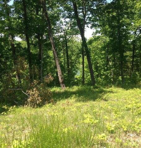 25 North Shore Drive, Monticello, KY 42633