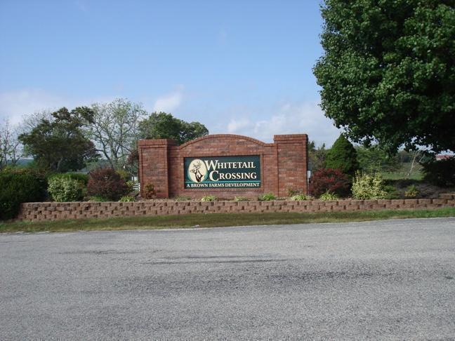 Whitetail Drive Walnut Shade, MO 65771