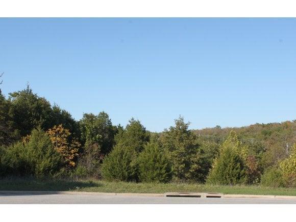 Comm Lots Deer Valley Drive #Lots 17 18 20 Branson, MO 65616