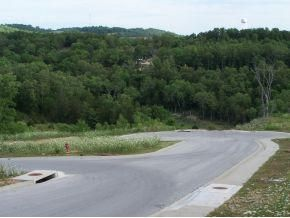 Sapling Drive Branson, MO 65616