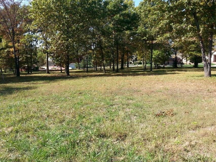 Lot 284 Little Aunts Creek Kimberling City, MO 65686