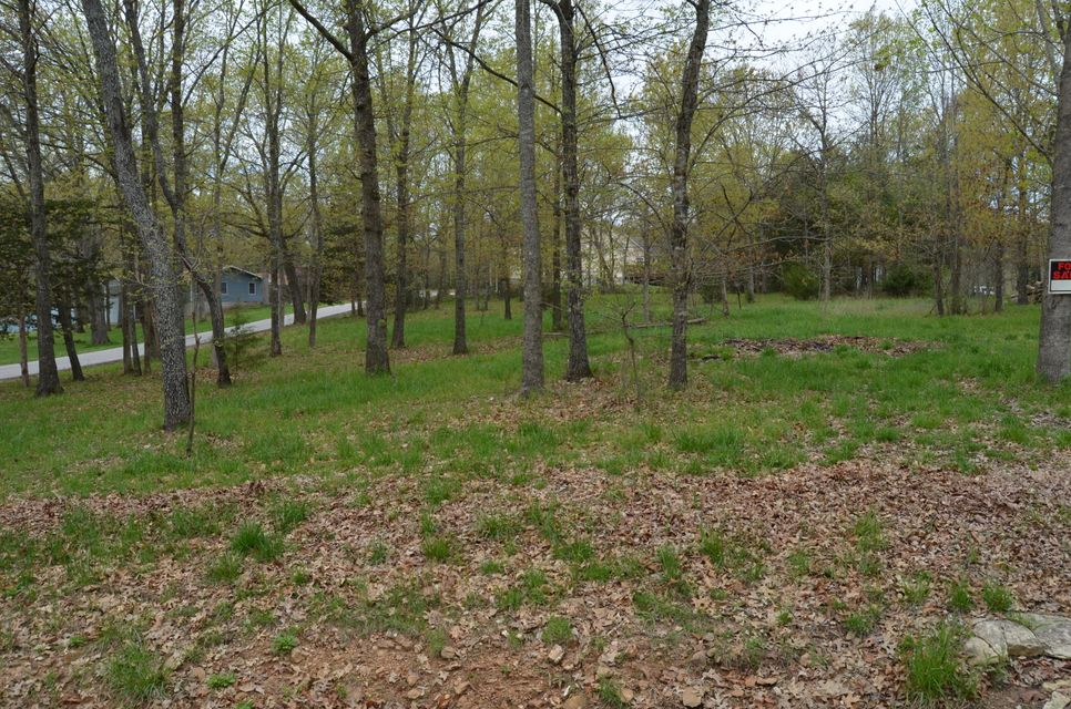 Lot 31 Millwood Drive Branson West, MO 65737