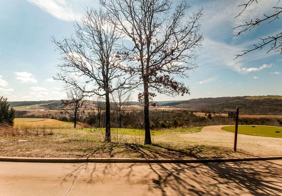 213  Windy Ridge Drive Hollister, MO 65672