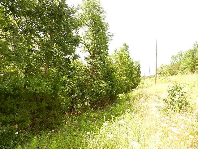 Lots 19-24 White Rock Bluff Branson West, MO 65737