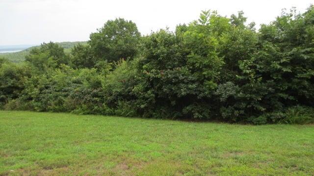 Chateau Lane Branson West, MO 65737