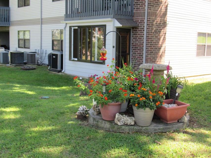 186  Bunker Ridge Drive #1 Branson, MO 65616