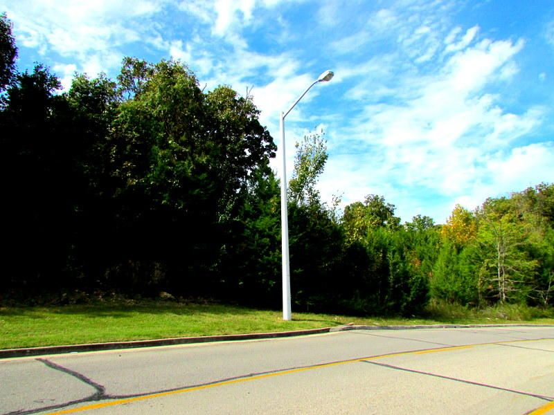 Bird Road Branson, MO 65616