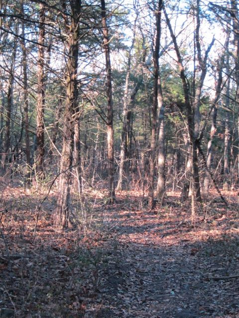 Timber Ridge Estates Fair Grove, MO 65648