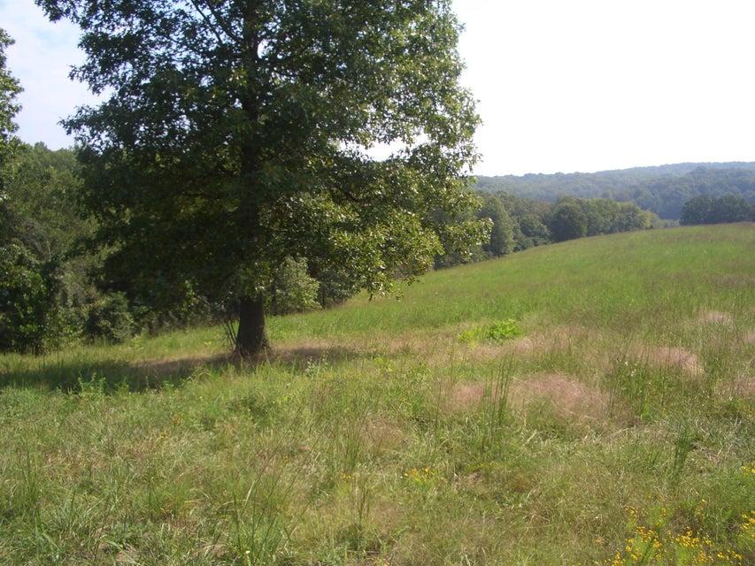 Mulberry Highlandville, MO 65669