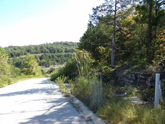 Emerald Pointe Phase 9 Lot 293 Hollister, MO 65672