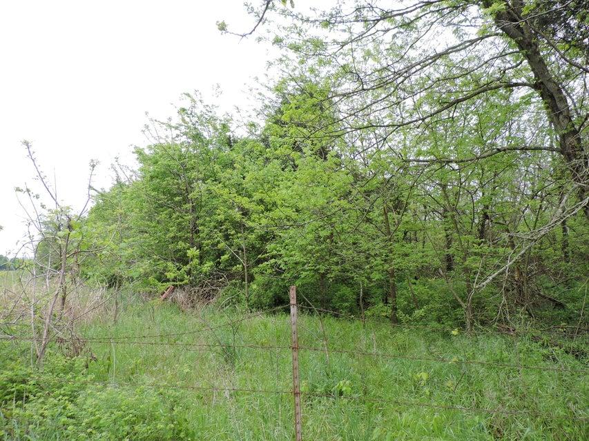 East Farm Road 56 Fair Grove, MO 65648