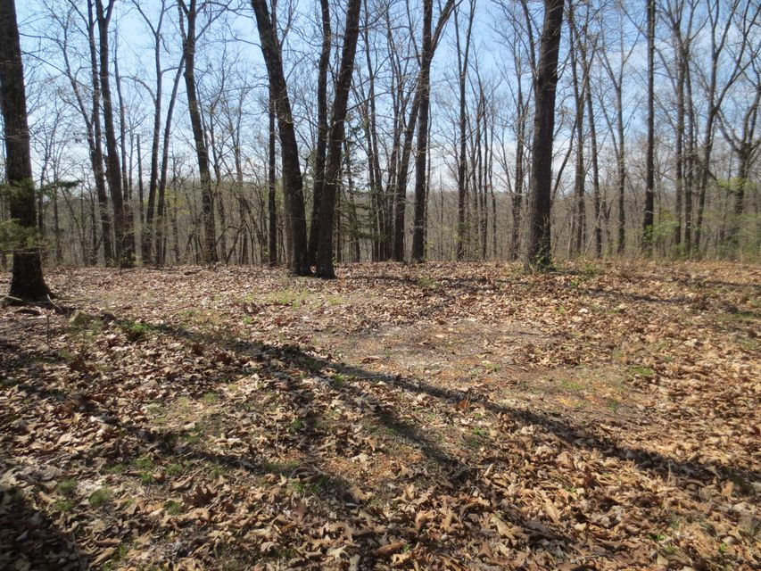 Lot 8 Sherwood Lane Saddlebrooke, MO 65630