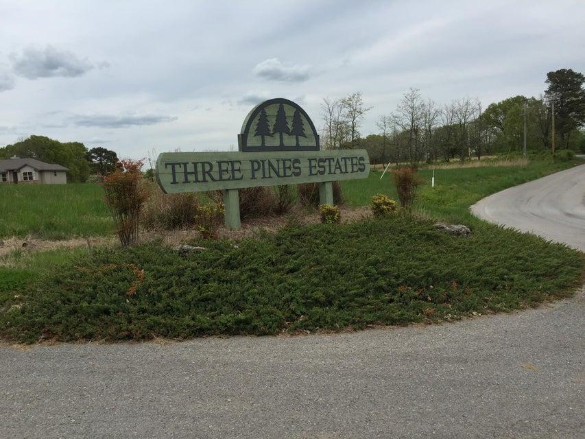 38  Lodgepole Lane Reeds Spring, MO 65737