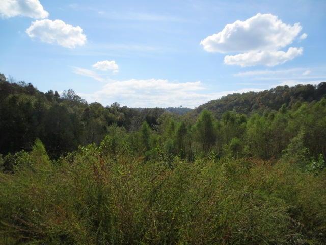 Willow Brook Lake & Estate Branson West, MO 65737