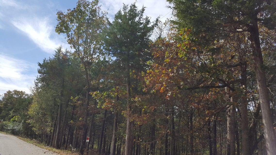 222  Cougar Trail Branson, MO 65616