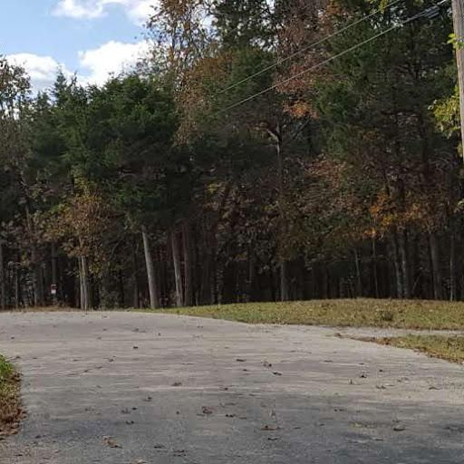 East Cougar Trails #lot # 6 Branson, MO 65616