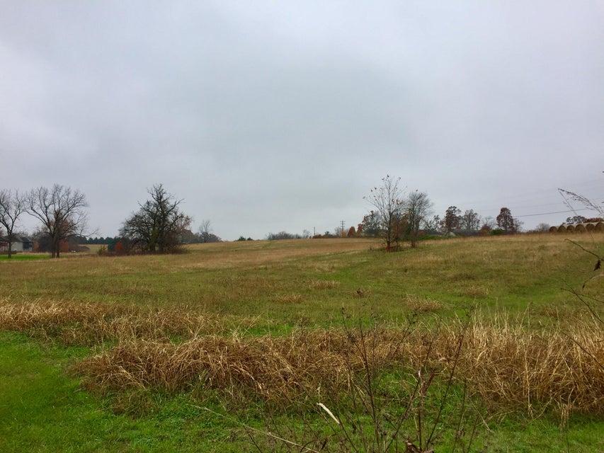 Lakeside Road Rogersville, MO 65742