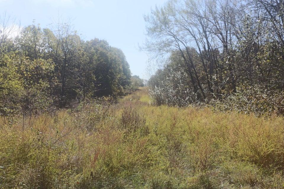 Tbd Red Rock Road Reeds Spring, MO 65737