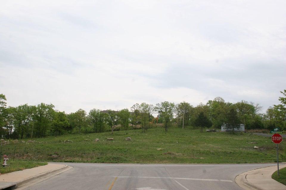 Wildwood Drive Branson, MO 65616