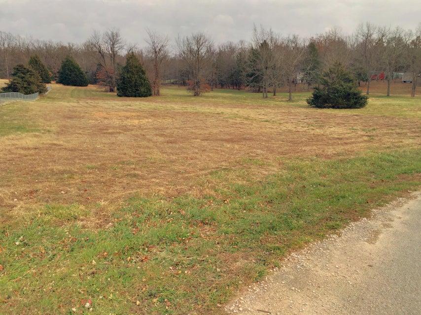 200  Autumn Circle #lot 1B Rogersville, MO 65742