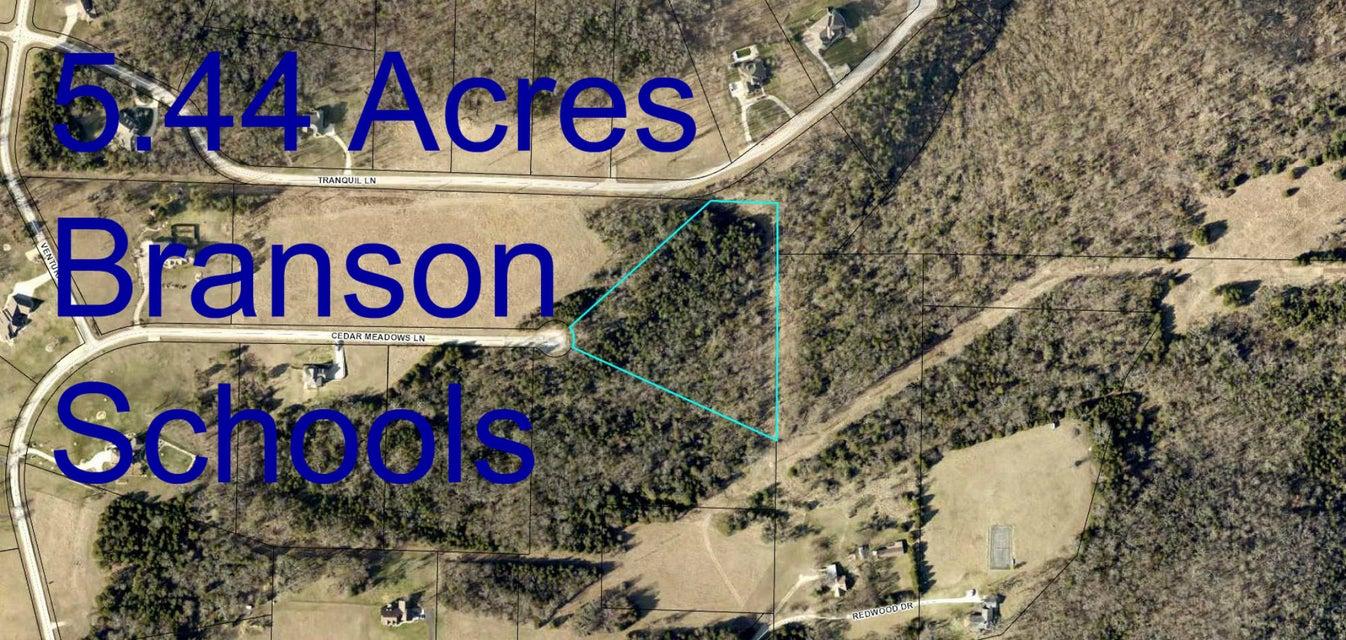 525  Cedar Meadows Lane Branson, MO 65616