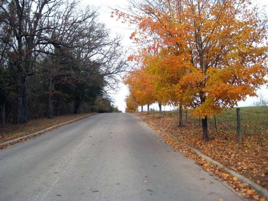 206  Garner Drive Branson, MO 65616