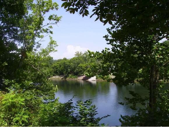 690  Fall Creek Drive #6 Branson, MO 65616