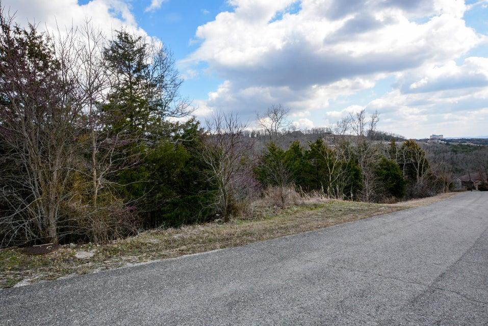522 Hummingbird Hills Lane Branson, MO 65616
