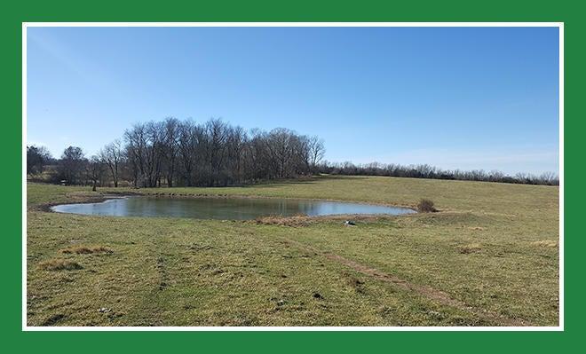7631 East Farm Rd 182 Rogersville, MO 65742
