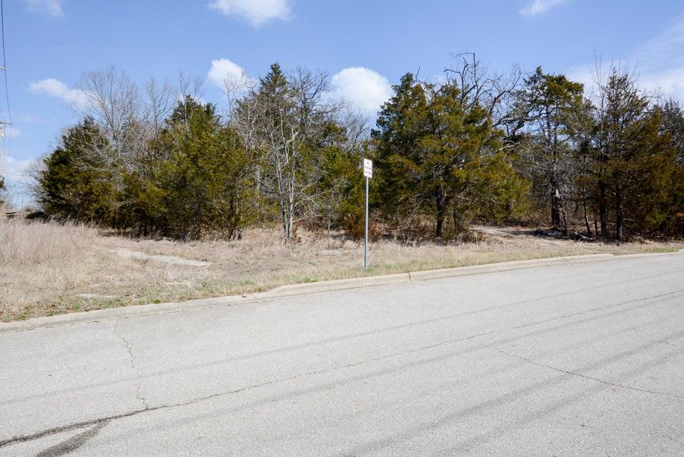 251 Pine Street Branson, MO 65616