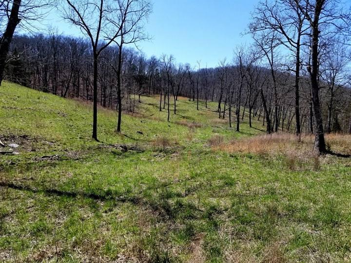 Tilden Road Reeds Spring, MO 65737