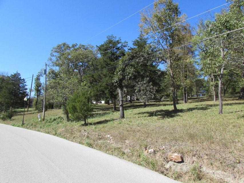 Tbd  Green Briar Drive Branson, MO 65616