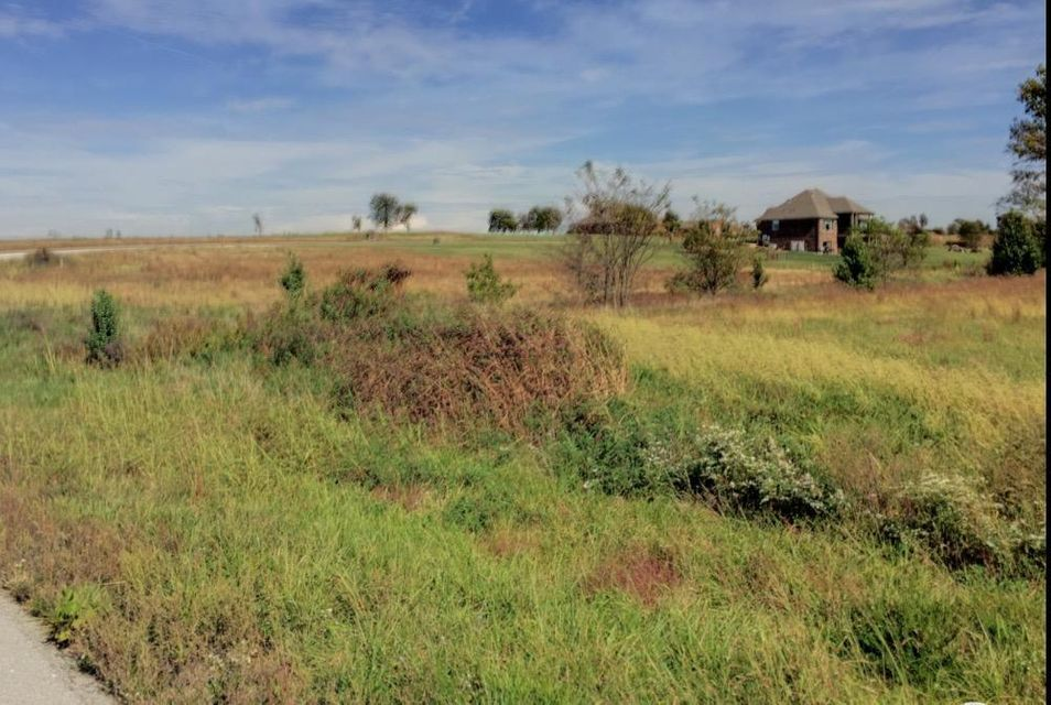 Ridge Park #Lot 8 Ozark, MO 65721