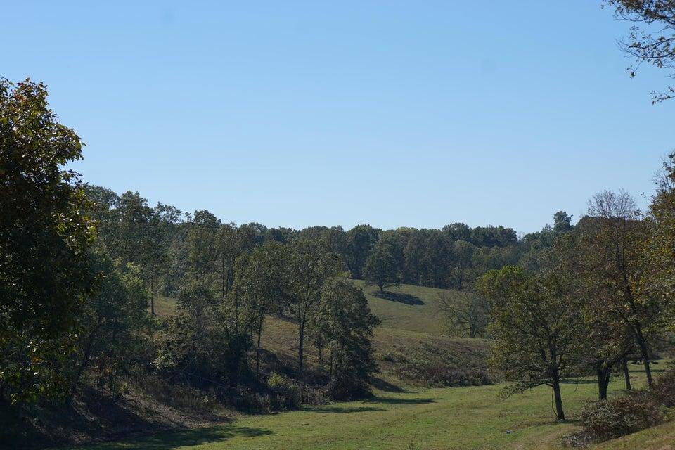 Horseshoe Drive Reeds Spring, MO 65656