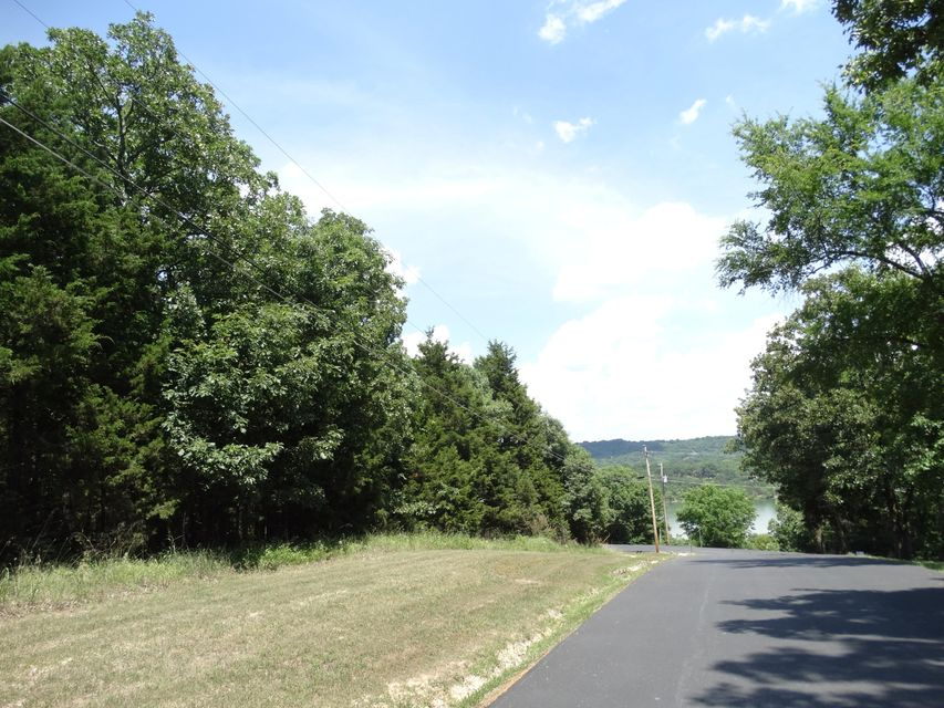 L1 Pioneer Point Road Galena, MO 65656