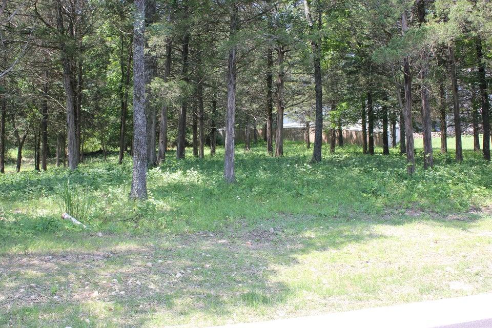 170 East Marion Lane Kirbyville, MO 65679