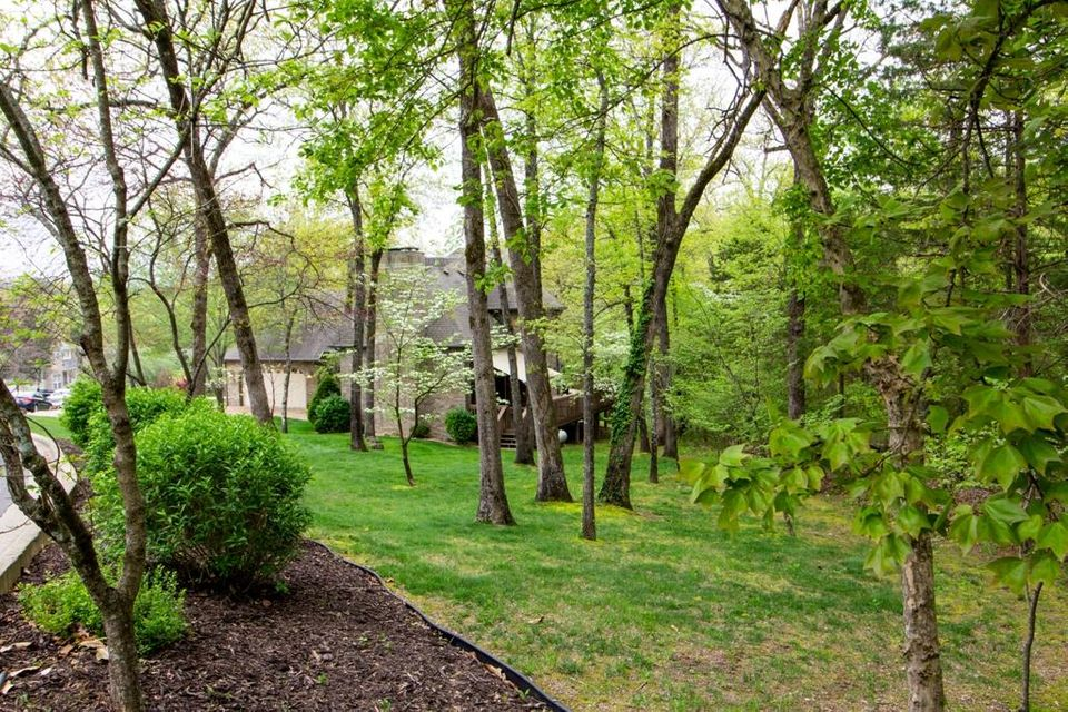 110 Country Bluff Drive Branson, MO 65616