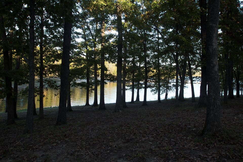 Tbd Cave Lane #Lot 6 Indian Point, MO 65616